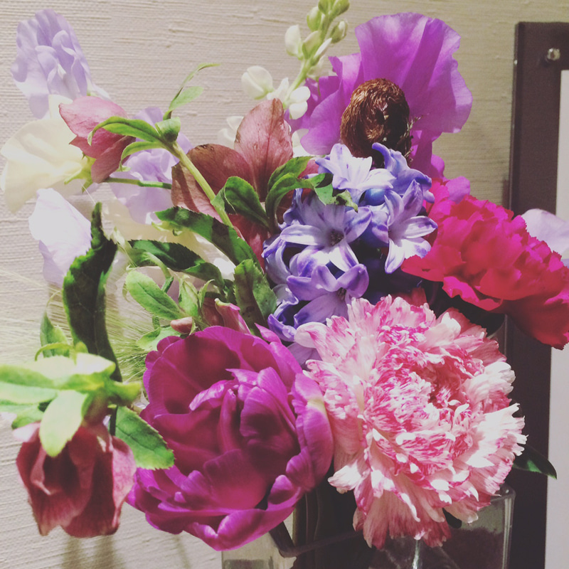 20170124_今日のお花