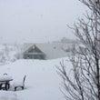 ★1月22日★ドカ雪…