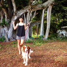 ハワイ:カウアイ島 …