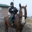 乗馬体験で学んだ、運…