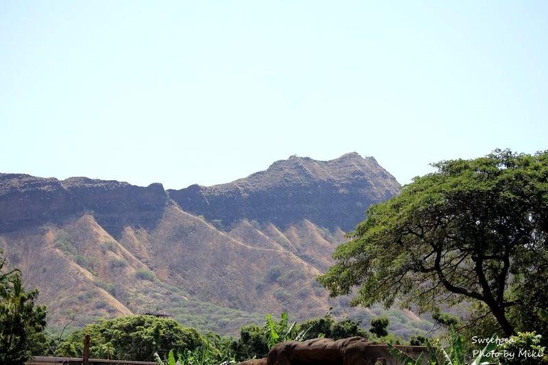 ハワイ旅行 カピオラニ公園 ホノルル動物園 ダイヤモンドヘッド