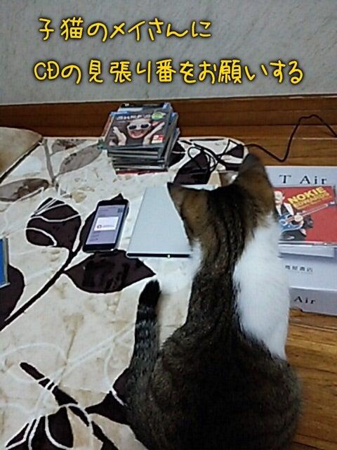 Windows Media Playerを利用したCD取り込み方法 ...