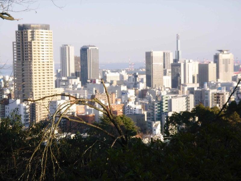 諏訪神社からの風景