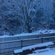 ちょっと雪が降りまし…