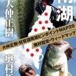 琵琶湖ピンポイントマ…