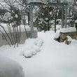 大雪ですね!!