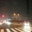 大雪でごじゃる! i…