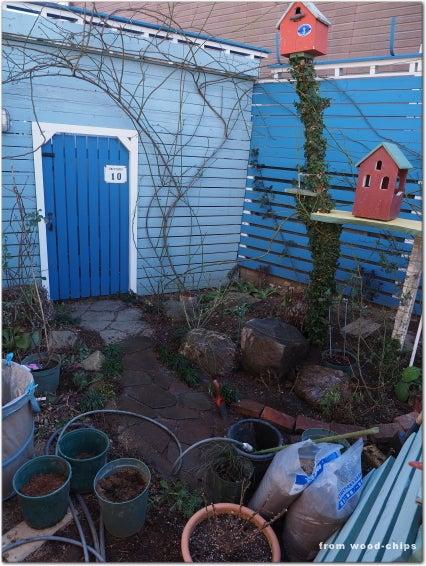 東大和市 バラの剪定 庭仕事