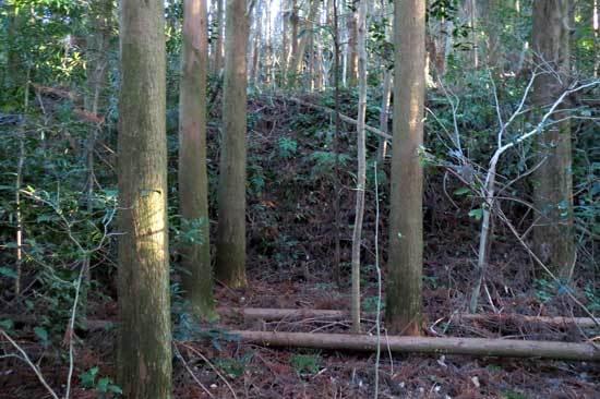 【写3】山崎城