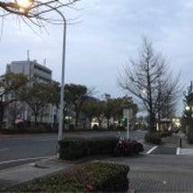 今朝は曇っています