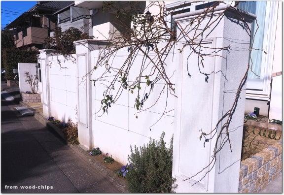 練馬区 バラの剪定 庭仕事