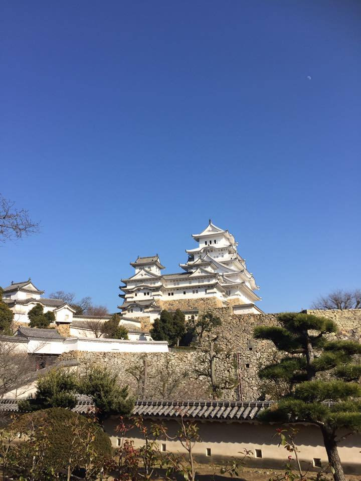 高台からの姫路城の眺め