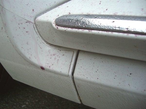 鉄粉除去剤に反応したボディに刺さった鉄粉汚れ