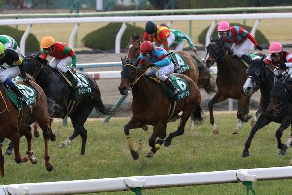 170218 京都牝馬S スナッチマインド6