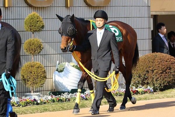 170218 京都牝馬S スナッチマインド2