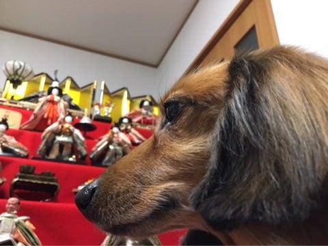 ℃-uteのブログ更新を辛抱強く待つスレ 970待ち [無断転載禁止]©2ch.netYouTube動画>17本 ->画像>558枚
