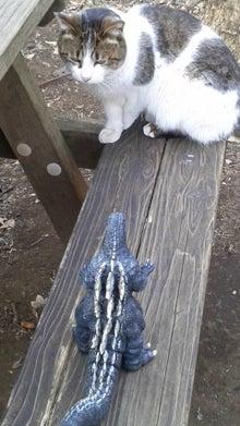 ゴジラ対猫