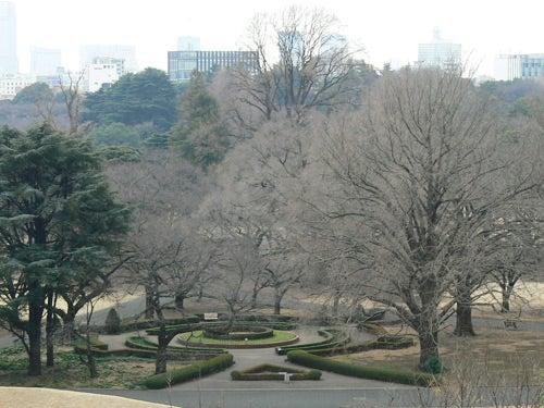 2017年3月13日の新宿御苑