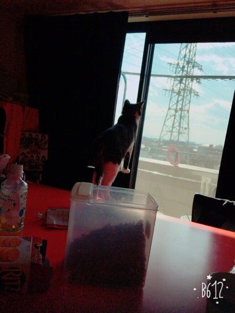 jjj^ゥ^jj 田口夏実 FanClub【こぶしファクトリーたぐっち】Part79 YouTube動画>5本 ->画像>110枚