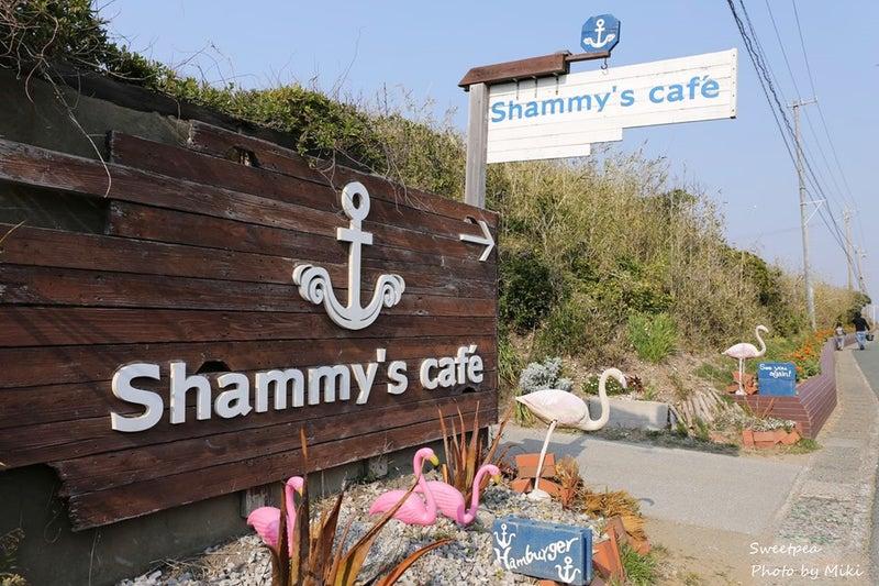 渥美半島 伊良湖 菜の花畑 カフェ Shammy's cafe