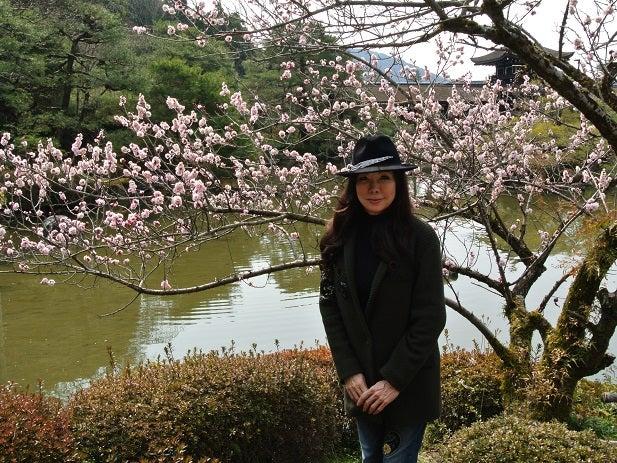 平安神宮 神苑 梅と伊藤由美ママ3