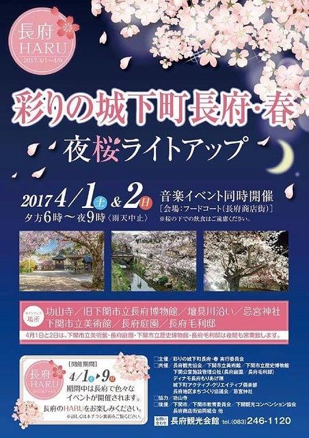 17.4夜桜祭り
