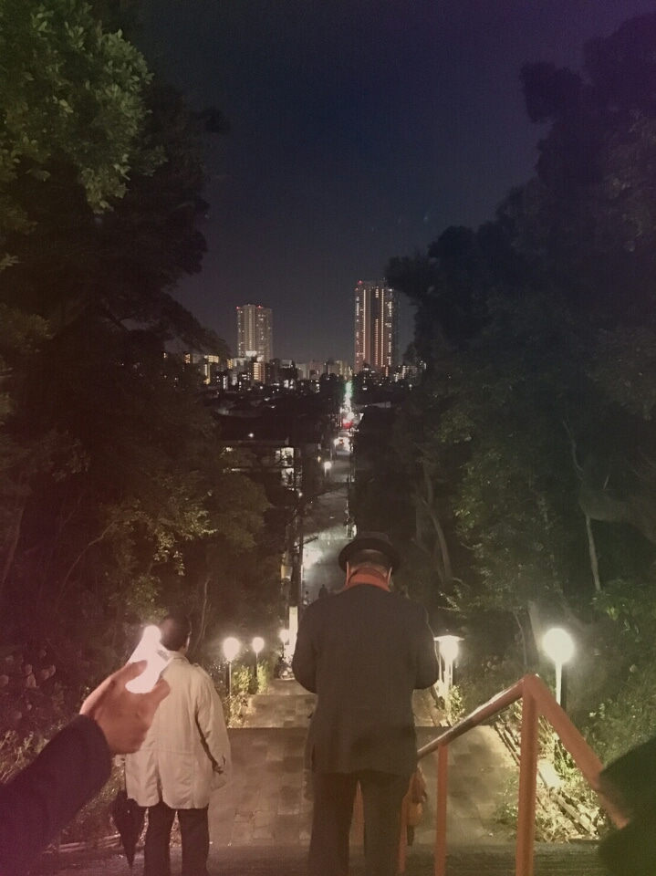 市川の伏姫観桜会の桜並木