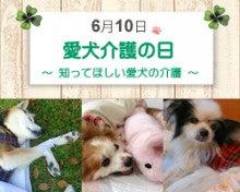 愛犬介護の日