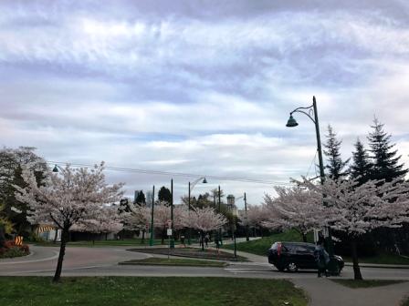 Apr 17'17 ⑨ アイ・カナダ留学サポート