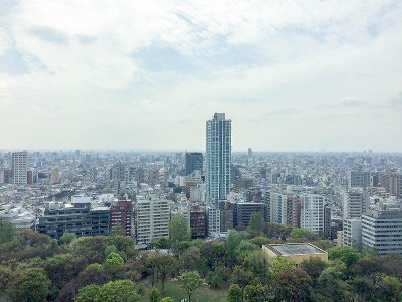 Hyatt Regency Tokyo Deluxe King 201704 6