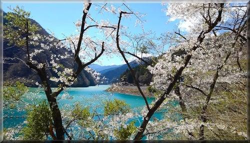 三峯神社 神域 神氣 山 空 桜 湖 自然 浄化 パワー
