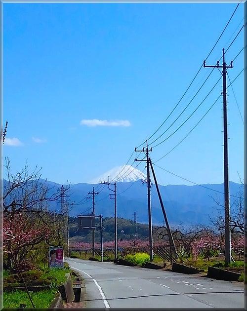 山 空 梅 富士山 自然 田舎 浄化 癒し パワー 充電