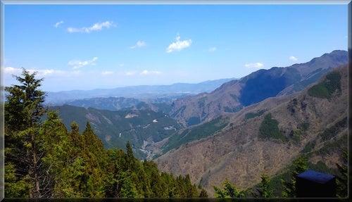 三峯神社 絶景 自然 木々 神域 神氣 霊氣 狼 お犬様