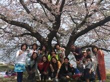 第28回桜マナレイボー会