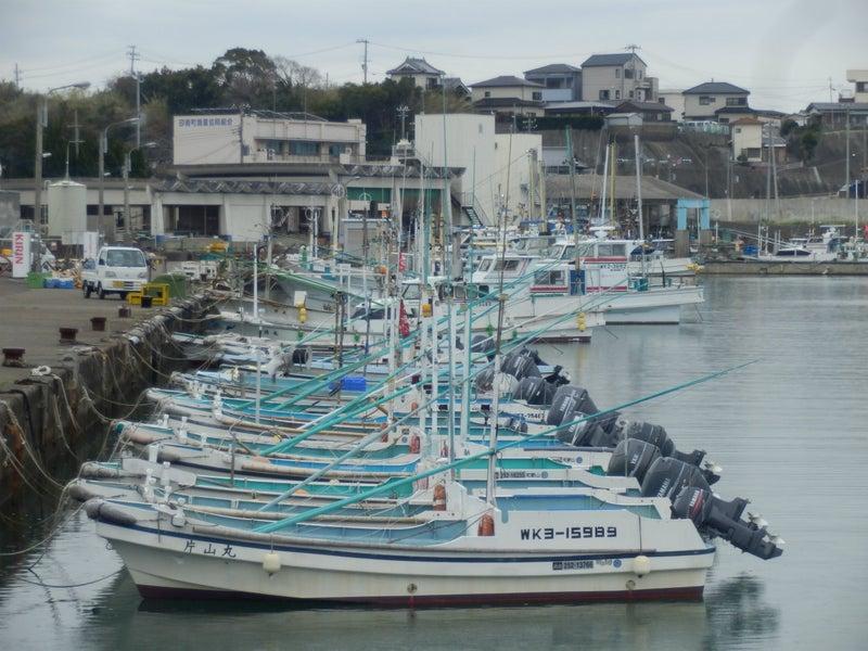 漁港に並ぶ船
