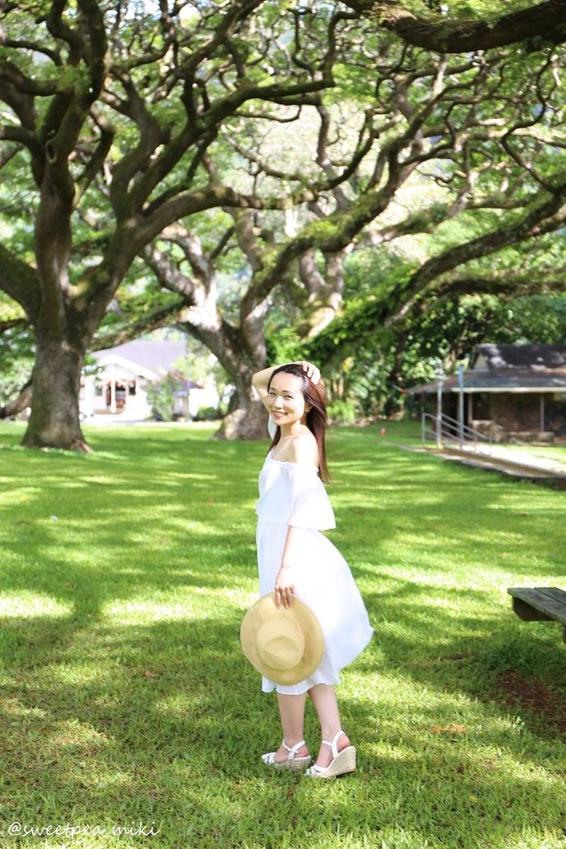 Ryujin Hawaii ハワイ フォトツアー ロケーションフォト 公園 緑
