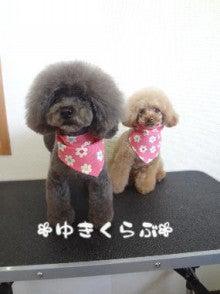 すずちゃん&ココちゃん♪