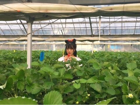 【NGT48】北原里英応援スレ☆Part753【きたりえ】©2ch.netYouTube動画>13本 ->画像>524枚
