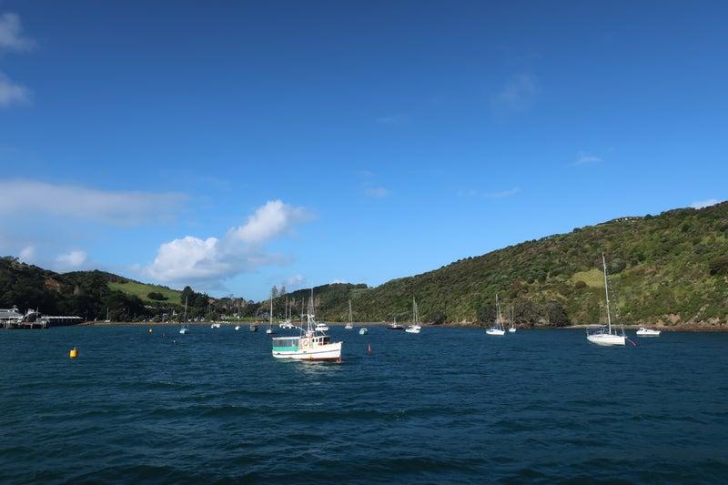 ワイヘケ島4