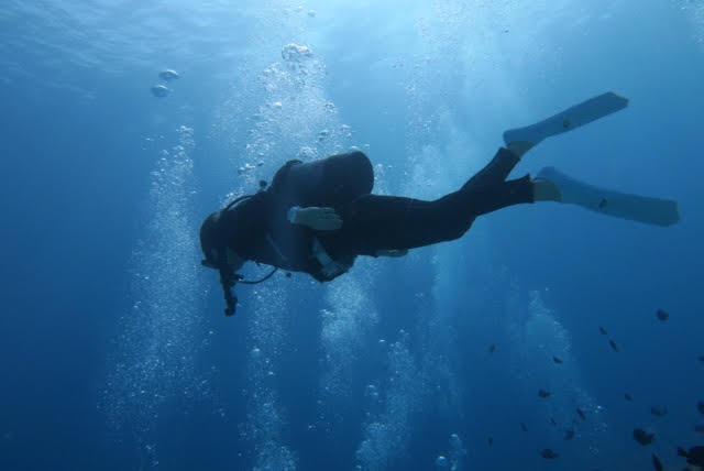 沖縄ダイビング8
