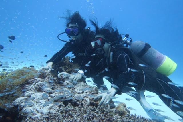 沖縄ダイビング16