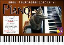 2017 ピアノ