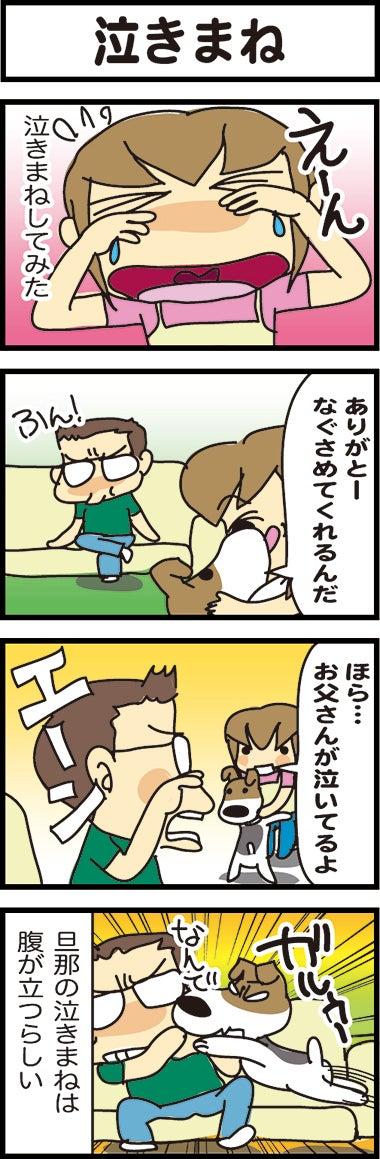 illust725