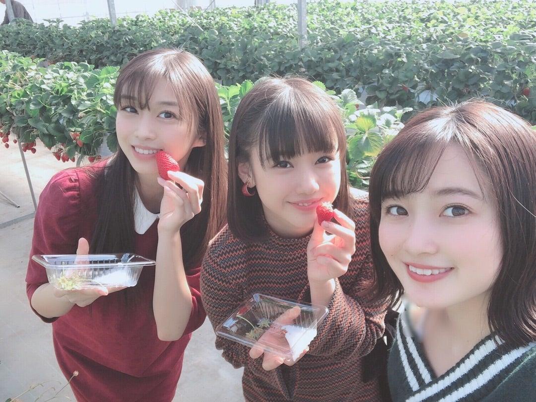 モーニング娘。'19ビジュアル3TOPがいちご狩り!!!!!!!