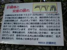 針綱さまと手彫りの狛犬