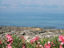 パレルモの海
