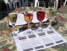 20080503-ワイン