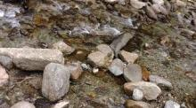 ぬくみ前の川
