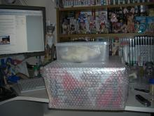 Tim's Blog-haruhi box opened