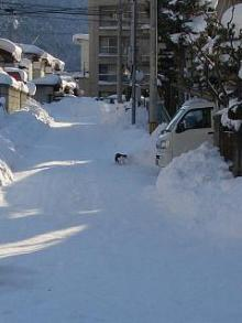 '06-山形雪道2